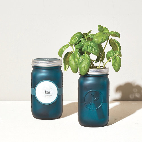 Self Watering Herb Kit- Basil