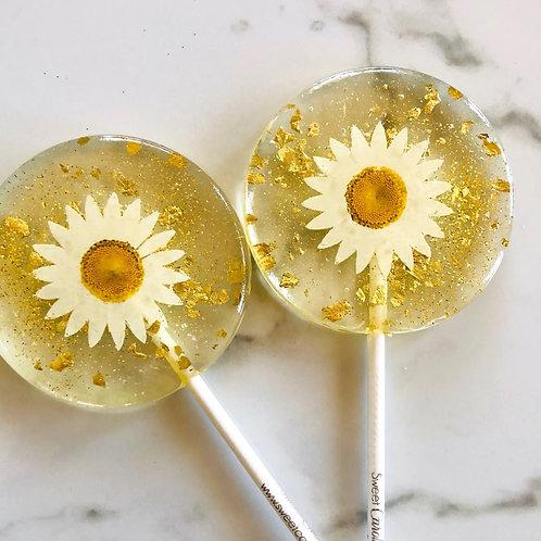 Daisy Lollipop