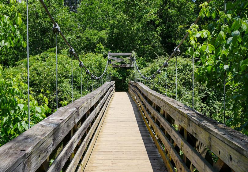 Morningside Nature Preserve, Atlanta, GA