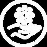 icon 3.webp