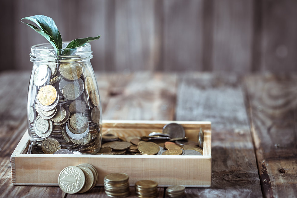 bank-with-coins-green-sprout_edited.jpg