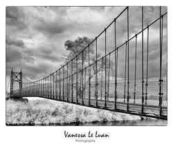 P1040550sus-bridge-infra-redwebready.jpg