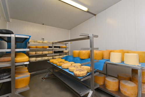A wide variety of cheeses