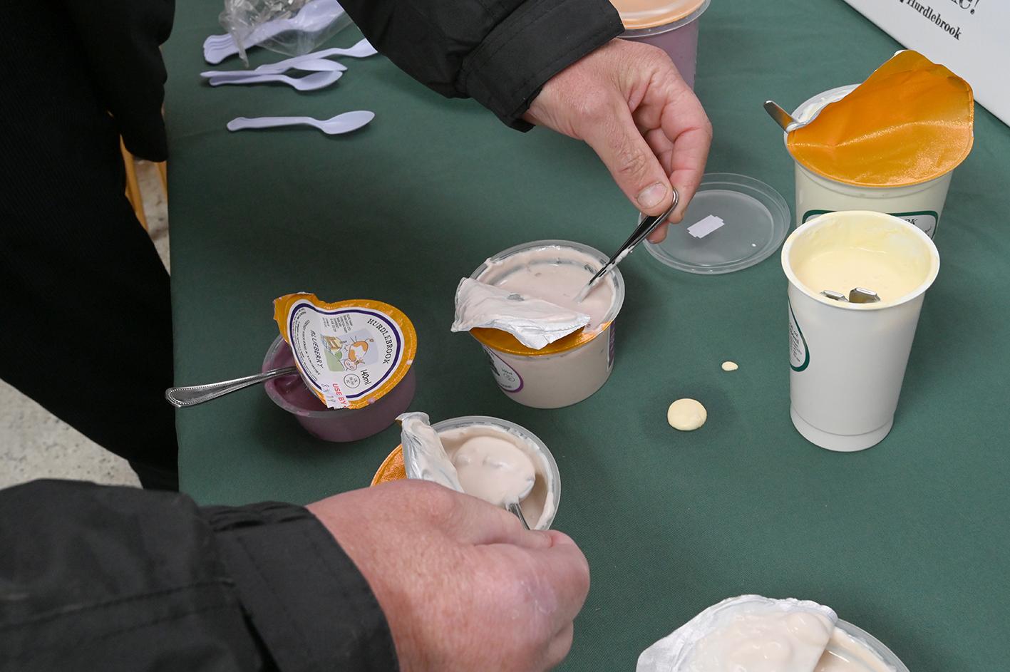 Yogurt sampling