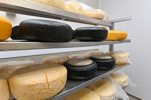 Different types of Guernsleigh Cheeses