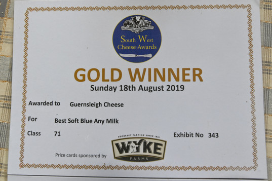 Gold Winner