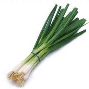 Fresh Green Onion Bunch
