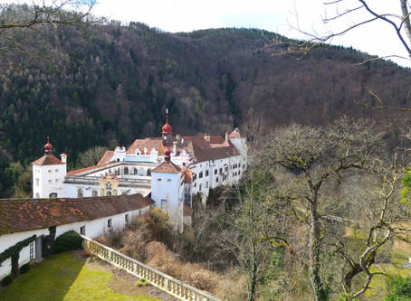 Home of the first Mangalitsas in Austria