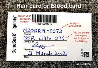 Neogen:GeneSeek Hair card MBOAR 1.jpg