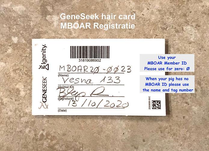 GeneSeek Hair Card 2_ MBOAR text jpg.jpg