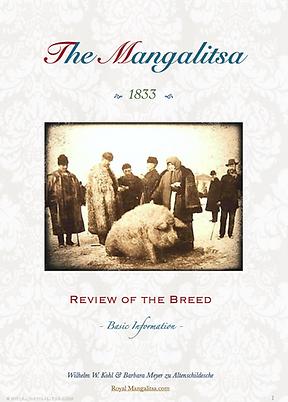 The Mangalitsa Pig PDF