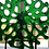 Thumbnail: Medium Transparent Green Coral Bowl