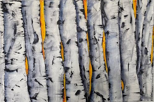 Summer Birches 2