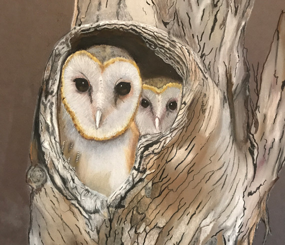 Owl and baby by Dianne Grey