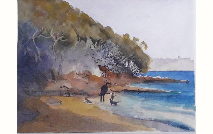 Atholl Beach, Sydney Harbour.