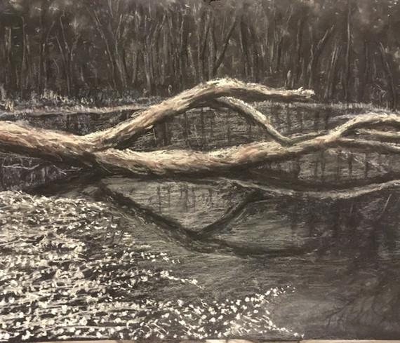 Log in a pond. Beth Taylor