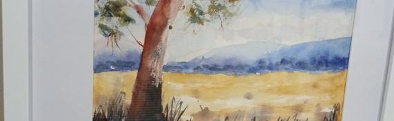 Daylight by Carol McCabe