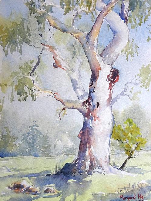 501 Practical Watercolour. Margaret Ng.
