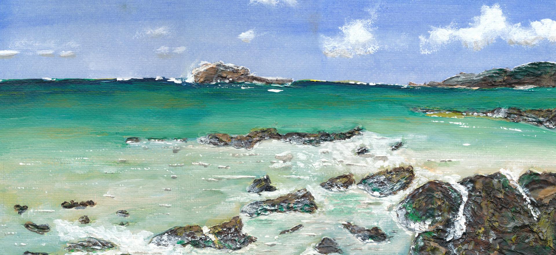 Seascape West Coast Tas.