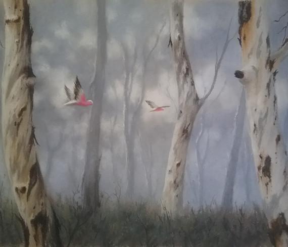 Flight through the trees. Sue Gasser