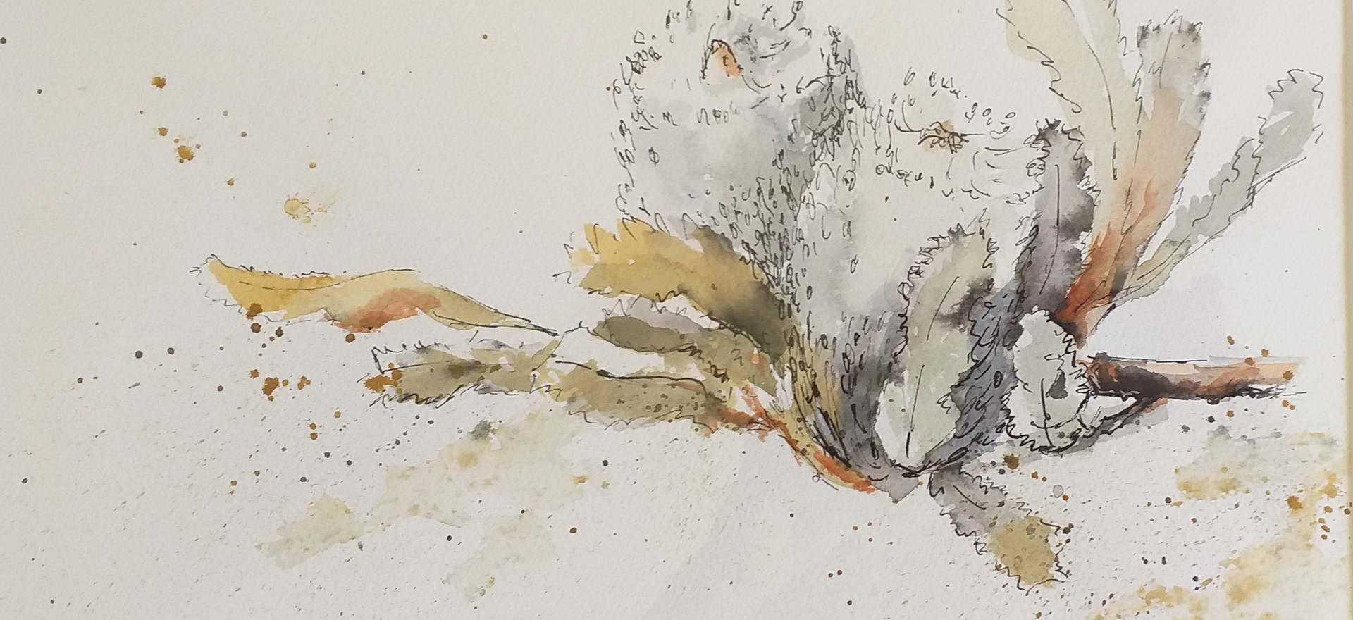 Banksia by Margaret Ng