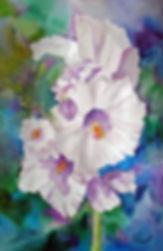 White Hollyhocks II $75.jpg