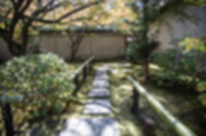 大徳寺 養徳院 daitoku temple youtoku in kyoto