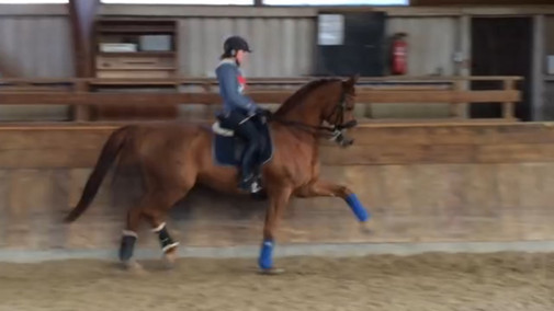 Horacio in training