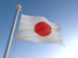 225-national-flag.jpg