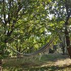 Magic Hill Retreat Center garden hamock