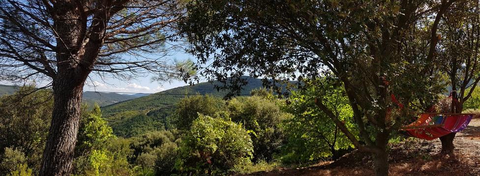 Magic Hill Retreat Center garden view