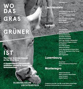 milena jovicevic, LIMLU, The Grass is Always Greener on the Other Side, curated by Kunstverein Schichtwechsel, Kunstmuseum Liechtenstein, Vaduz, 2015.