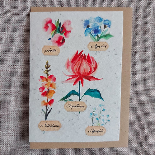 "Carte à planter ""Botanique"""