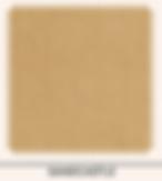 Screen Shot 2020-03-27 at 1.12.16 PM.png