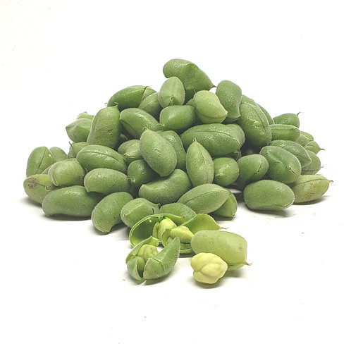 Fresh Garbanzo Bean in the Pod 1lb