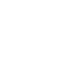 white transp-01.png