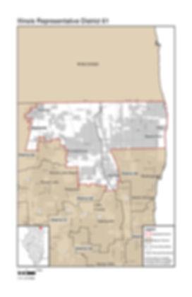 2011 Illinois Representative District 61