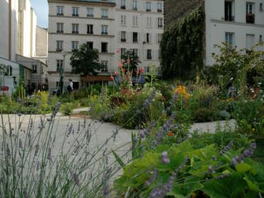 Végétalisation urbaine : quand les professionnels interpellent les élus