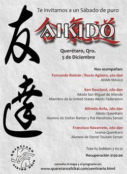 día_de_aikido_en_Querétaro