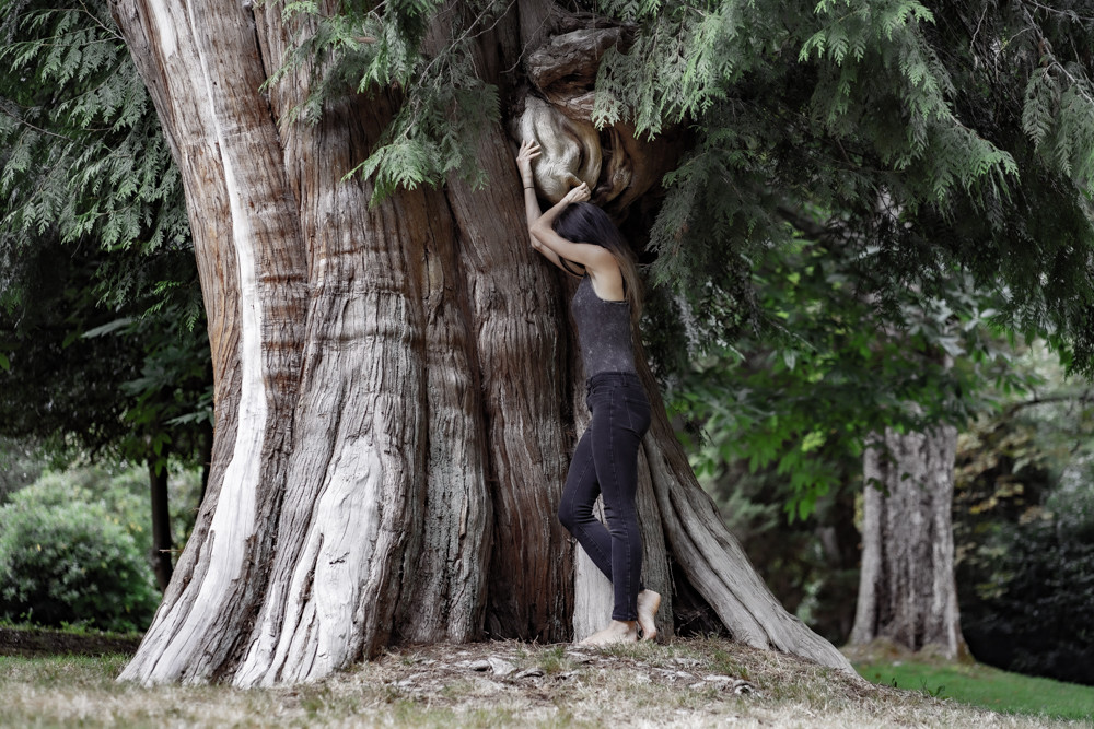 Nina Maria Photography, old growth forest, editorial photography,  rare bird blog, Kelowna photographer