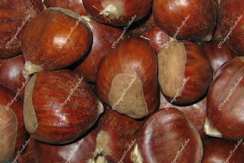 Chestnuts from Portugal (Castanhas)