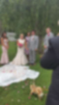 Wedding Officiant Near Me