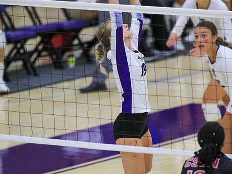 Wildcat Volleyball Is Back And It Deserves Your Attention