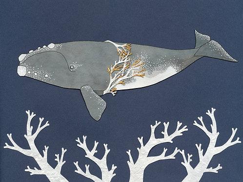 Wondrous Right Whale print