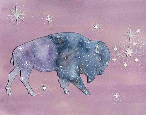 Bison Constellation print