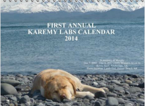 Front_of_2014_calender.PNG