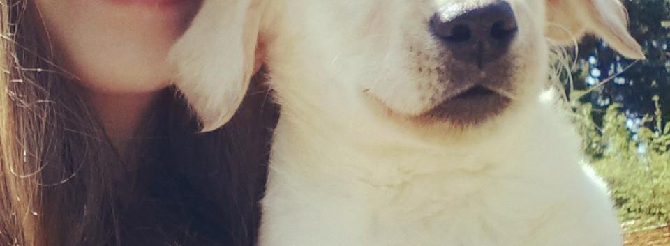 Baby Lottie.jpg