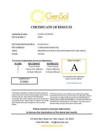 GensolResult219983-page-001.jpg