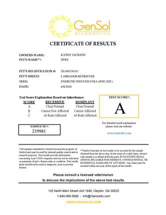 GensolResult219981-page-001.jpg