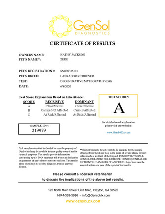 GensolResult219979-page-001.jpg